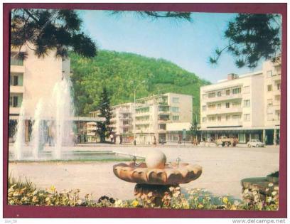Берковица - център
