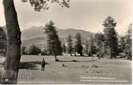 Old postcard - Berkovitsa, landscape